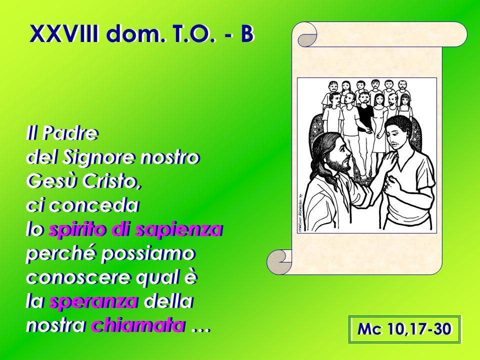 XXVIII dom. T.O. - B