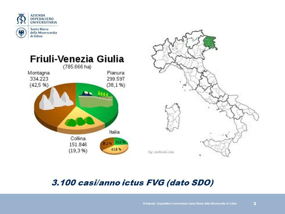 3.100 casi/anno ictus FVG (dato SDO)