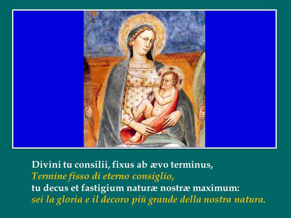 Divini tu consilii, fixus ab ævo terminus, Termine fisso di eterno consiglio, tu decus et fastigium naturæ nostræ maximum: sei la gloria e il decoro più grande della nostra natura.