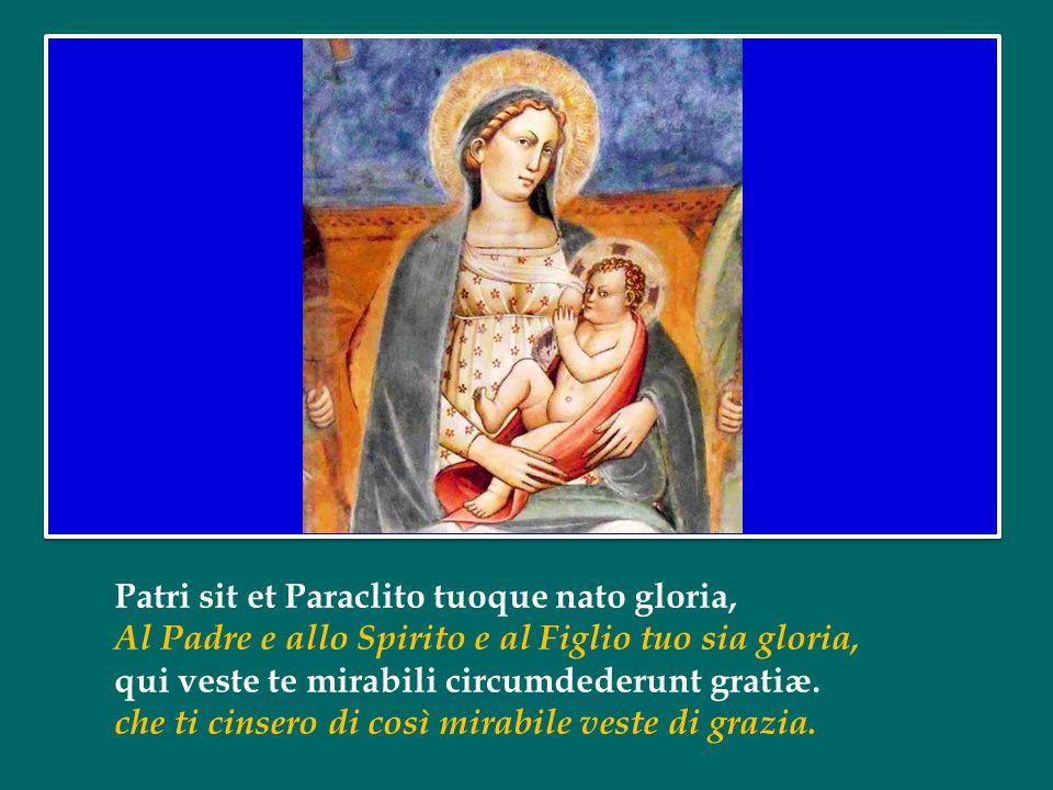 Patri sit et Paraclito tuoque nato gloria, Al Padre e allo Spirito e al Figlio tuo sia gloria, qui veste te mirabili circumdederunt gratiæ.