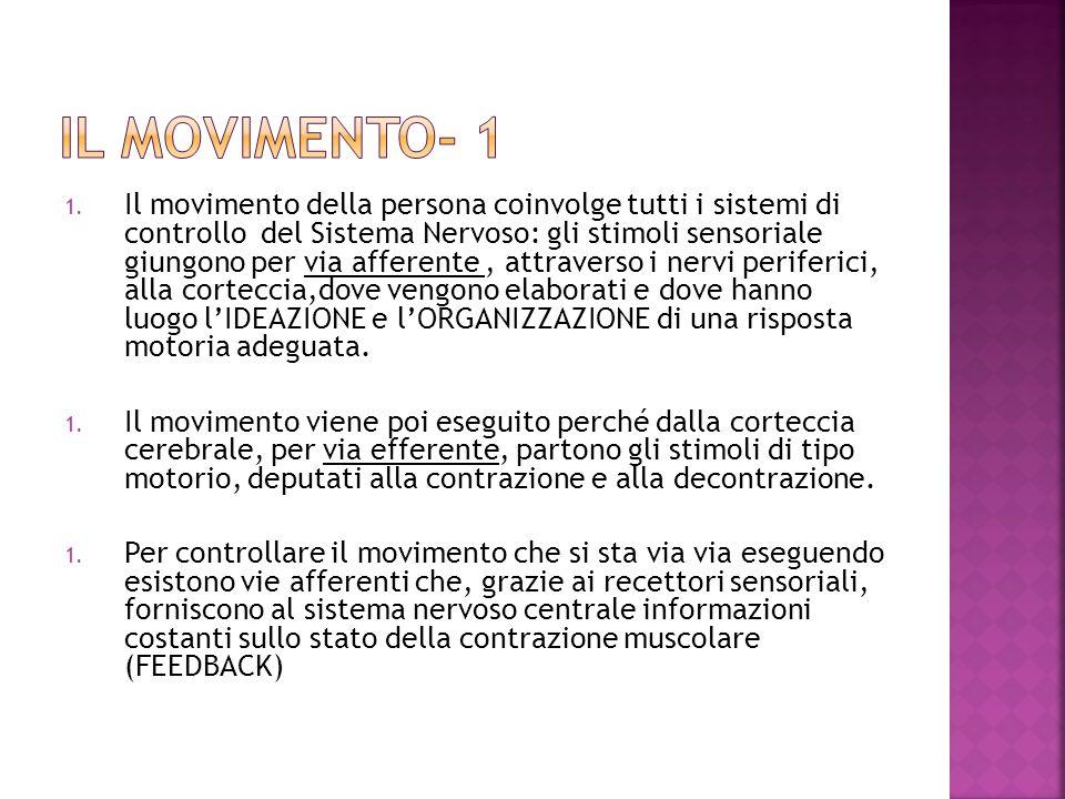 IL MOVIMENTO- 1