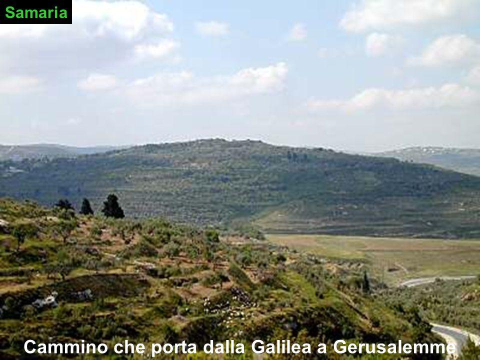 Cammino che porta dalla Galilea a Gerusalemme