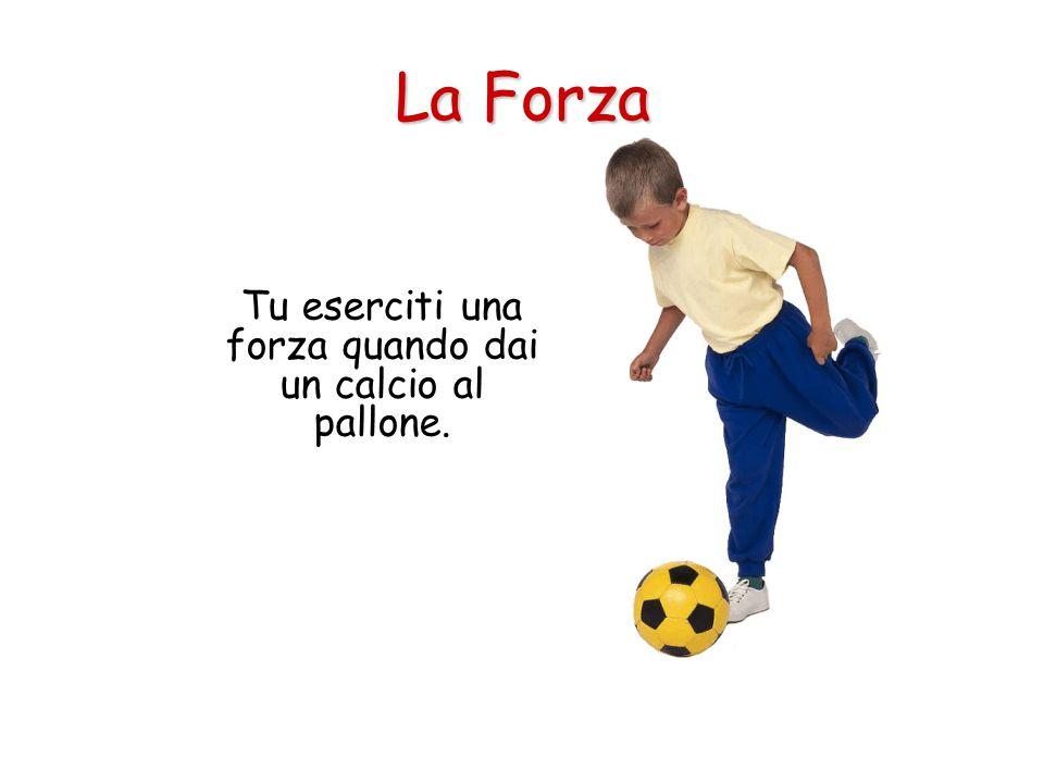 Tu eserciti una forza quando dai un calcio al pallone.
