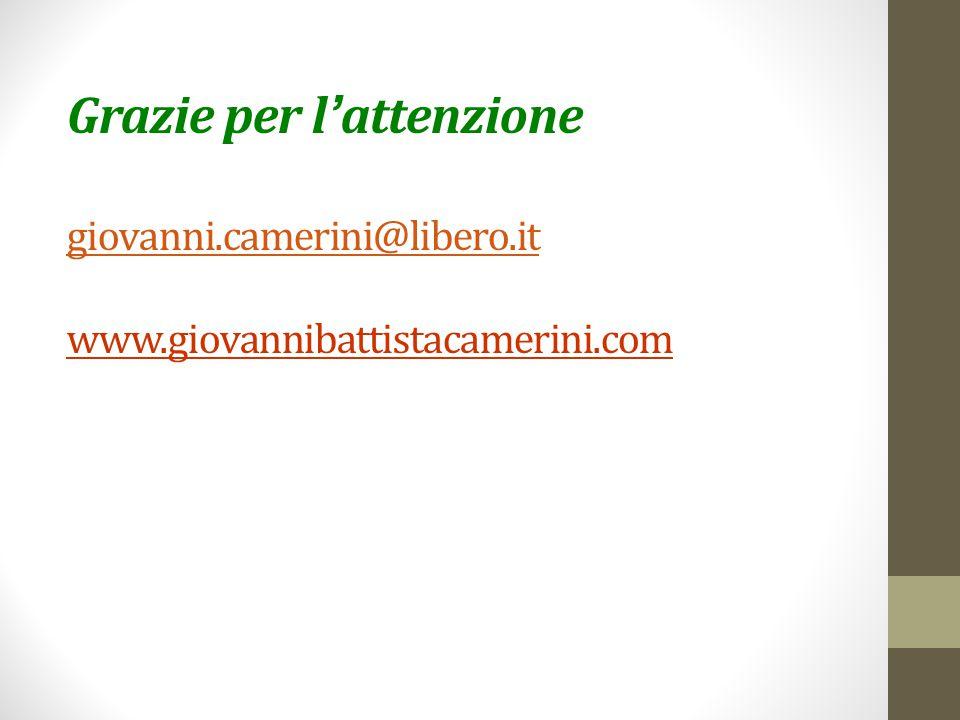 Grazie per l'attenzione giovanni. camerini@libero. it www