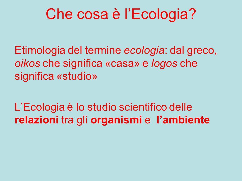 Che cosa è l'Ecologia Etimologia del termine ecologia: dal greco, oikos che significa «casa» e logos che significa «studio»