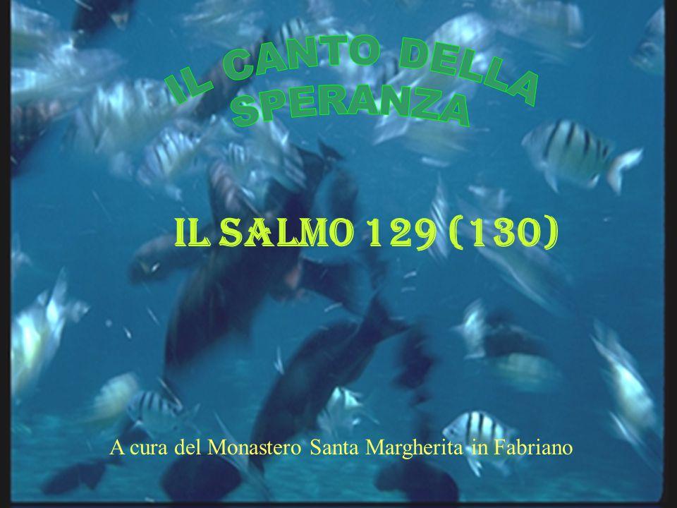 A cura del Monastero Santa Margherita in Fabriano