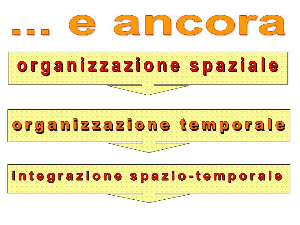 organizzazione spaziale integrazione spazio-temporale