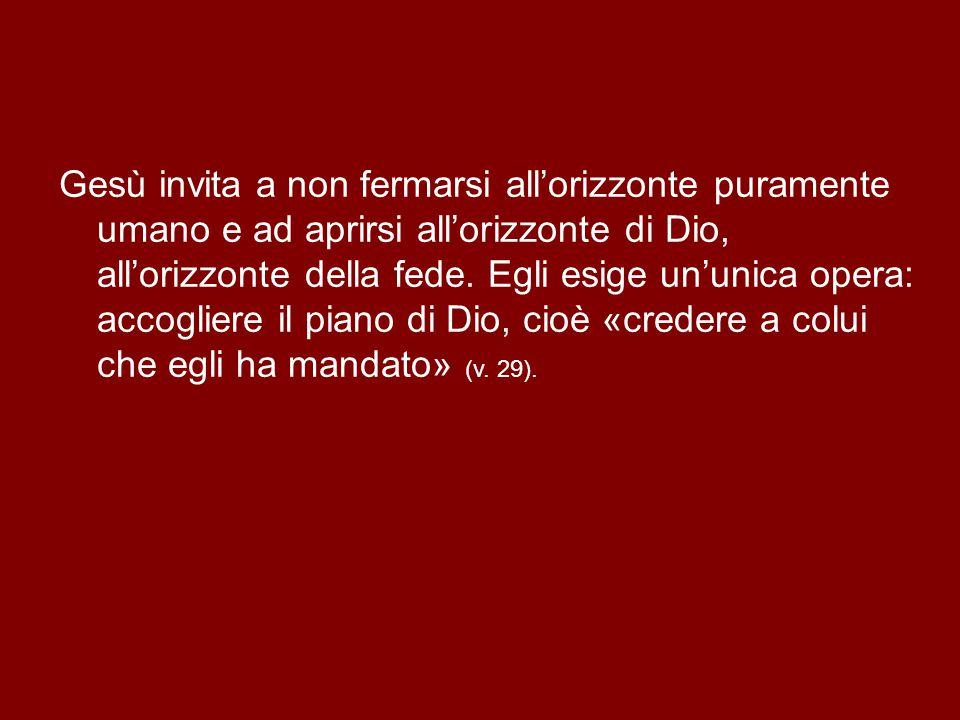 Gesù invita a non fermarsi all'orizzonte puramente umano e ad aprirsi all'orizzonte di Dio, all'orizzonte della fede.