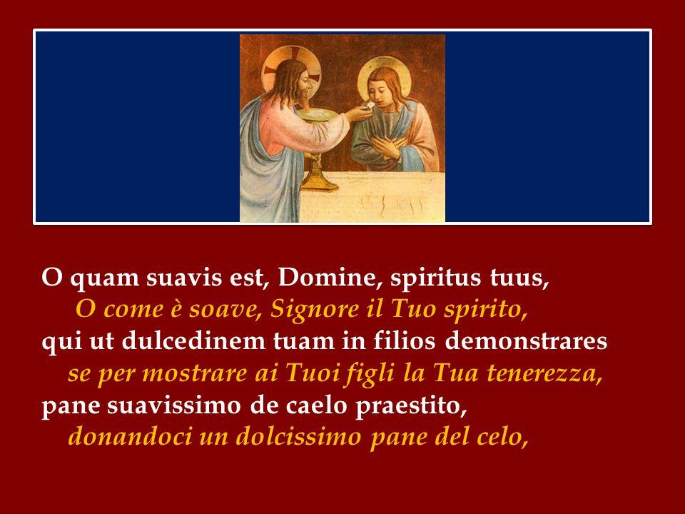 O quam suavis est, Domine, spiritus tuus, O come è soave, Signore il Tuo spirito, qui ut dulcedinem tuam in filios demonstrares se per mostrare ai Tuoi figli la Tua tenerezza, pane suavissimo de caelo praestito, donandoci un dolcissimo pane del celo,