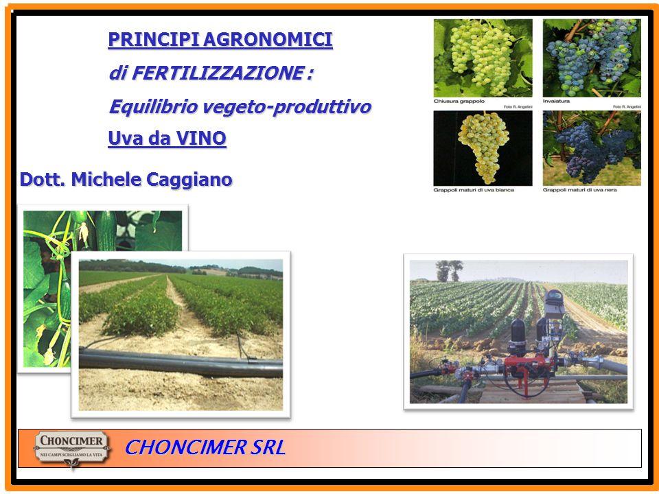 PRINCIPI AGRONOMICI di FERTILIZZAZIONE : Equilibrio vegeto-produttivo.
