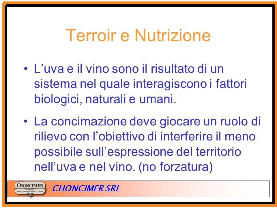 Terroir e Nutrizione L'uva e il vino sono il risultato di un sistema nel quale interagiscono i fattori biologici, naturali e umani.