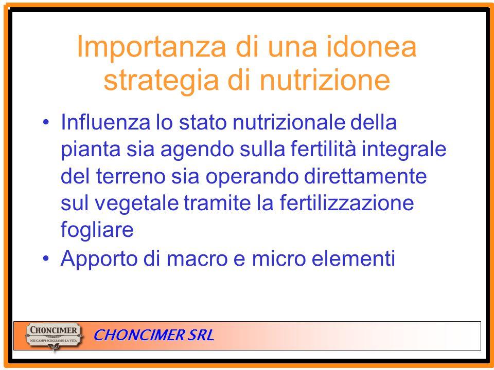 Importanza di una idonea strategia di nutrizione