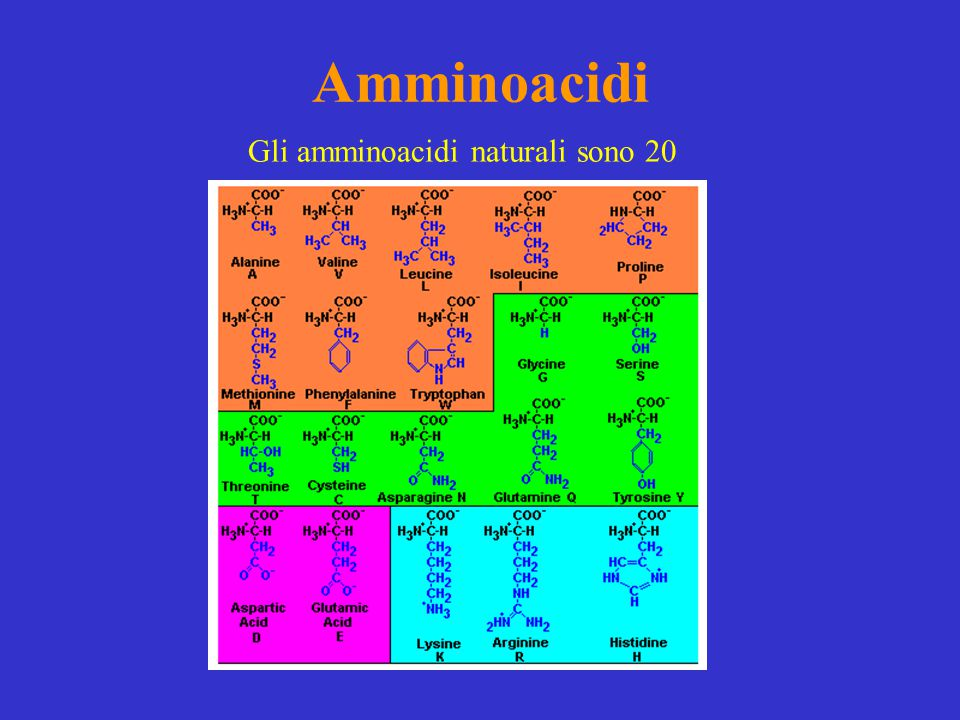 Amminoacidi Gli amminoacidi naturali sono 20