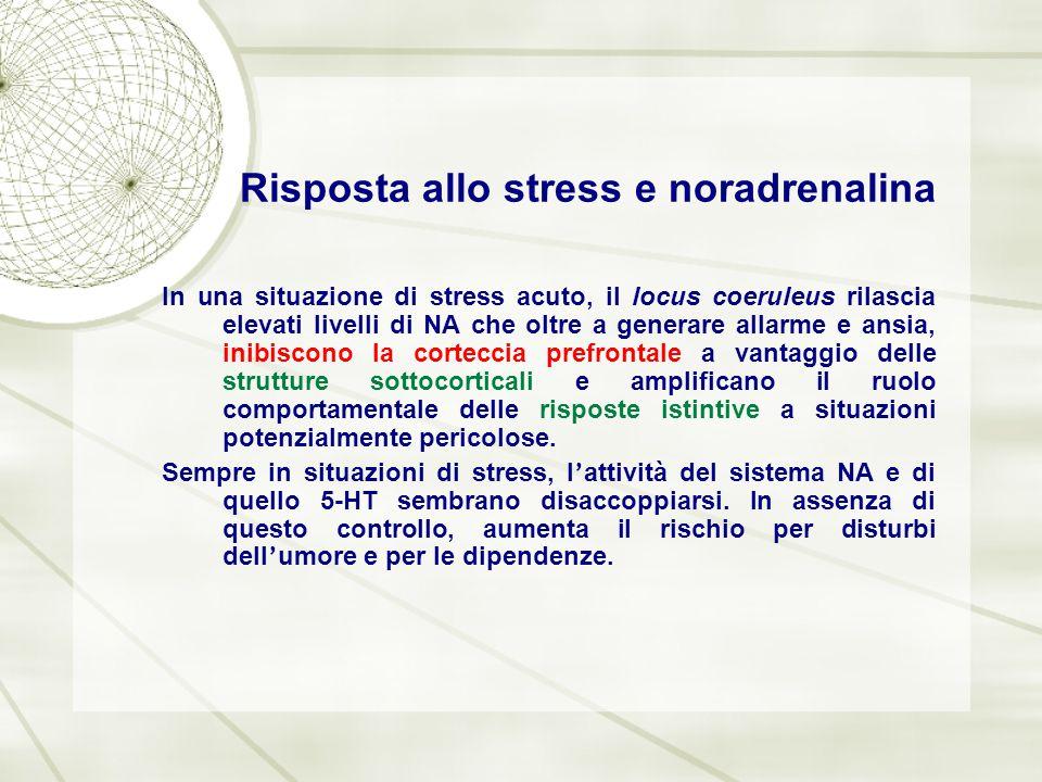 Risposta allo stress e noradrenalina