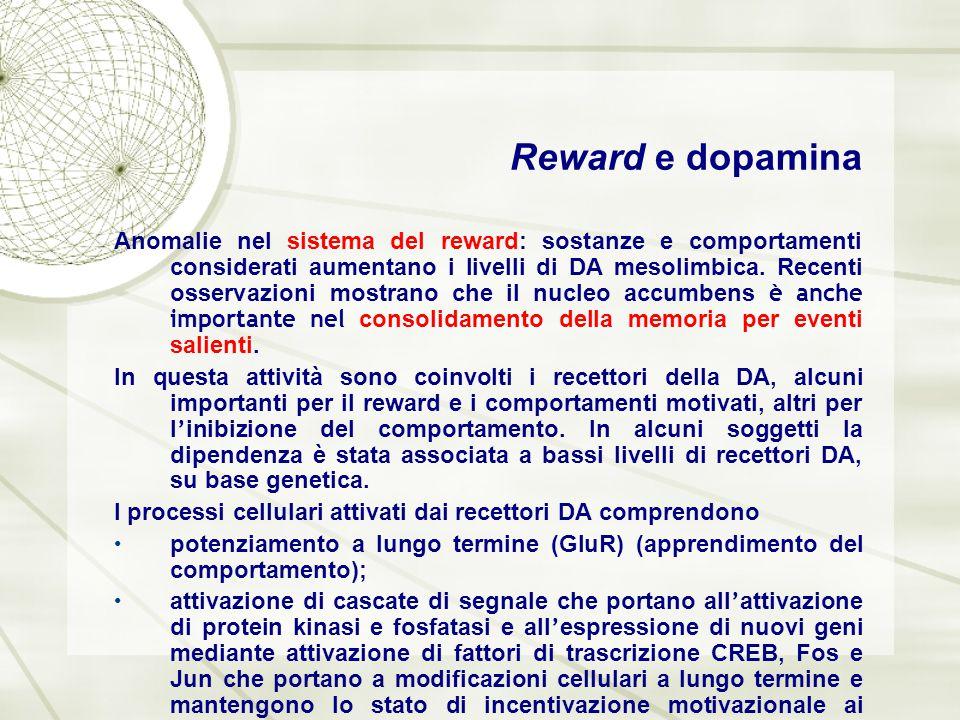 Reward e dopamina