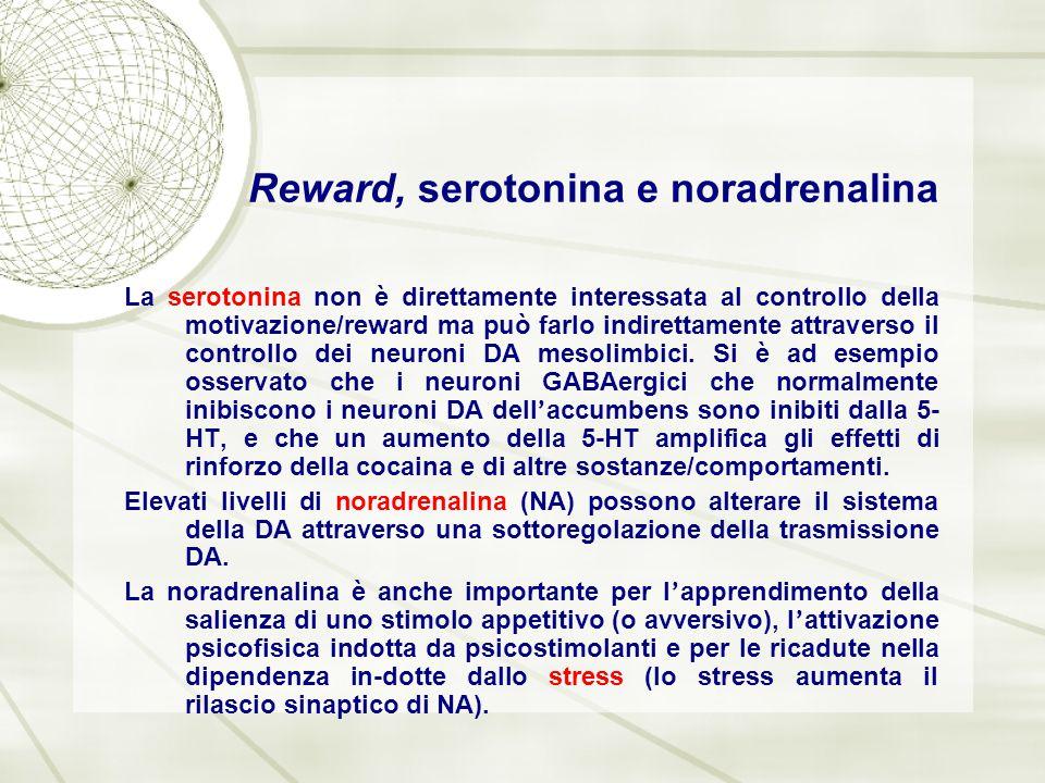 Reward, serotonina e noradrenalina