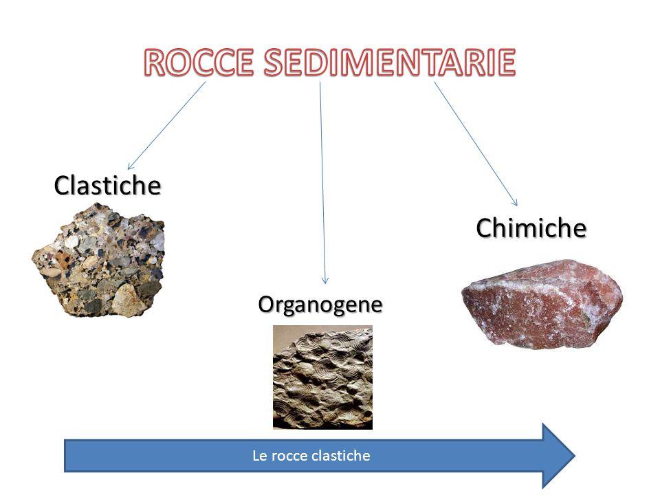 ROCCE SEDIMENTARIE Clastiche Chimiche Organogene Le rocce clastiche
