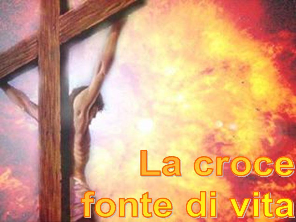 La croce fonte di vita