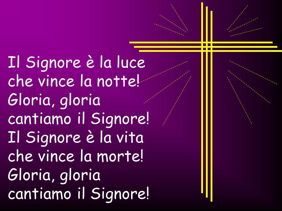 Il Signore è la luce che vince la notte! Gloria, gloria. cantiamo il Signore! Il Signore è la vita.