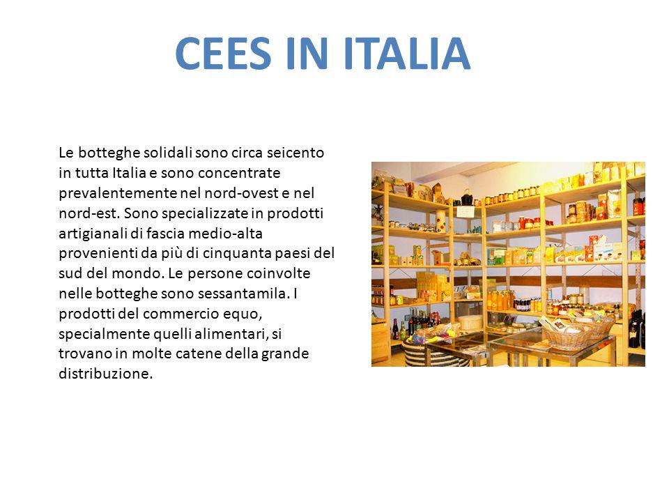 CEES IN ITALIA