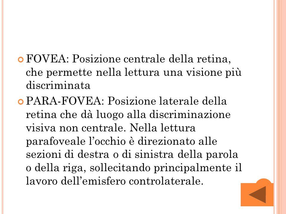 FOVEA: Posizione centrale della retina, che permette nella lettura una visione più discriminata