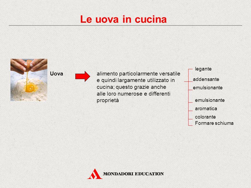 Le uova in cucina legante. Uova. alimento particolarmente versatile e quindi largamente utilizzato in cucina; questo grazie anche.
