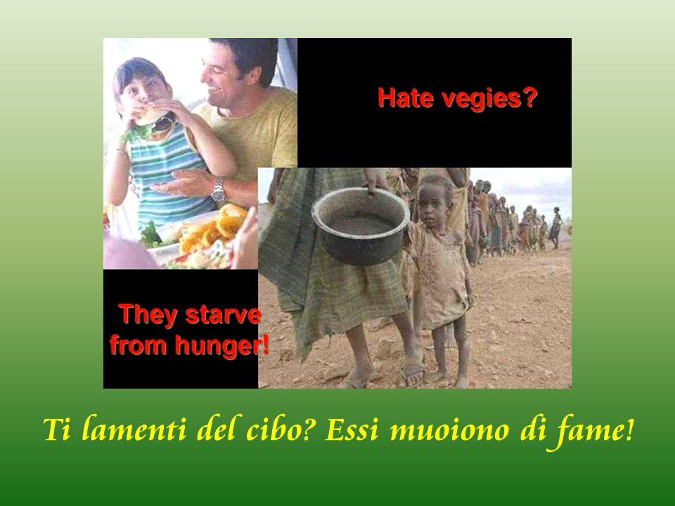Ti lamenti del cibo Essi muoiono di fame!
