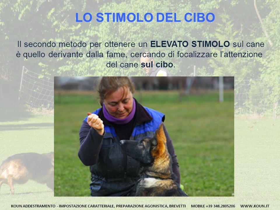 LO STIMOLO DEL CIBO Il secondo metodo per ottenere un ELEVATO STIMOLO sul cane. è quello derivante dalla fame, cercando di focalizzare l'attenzione.