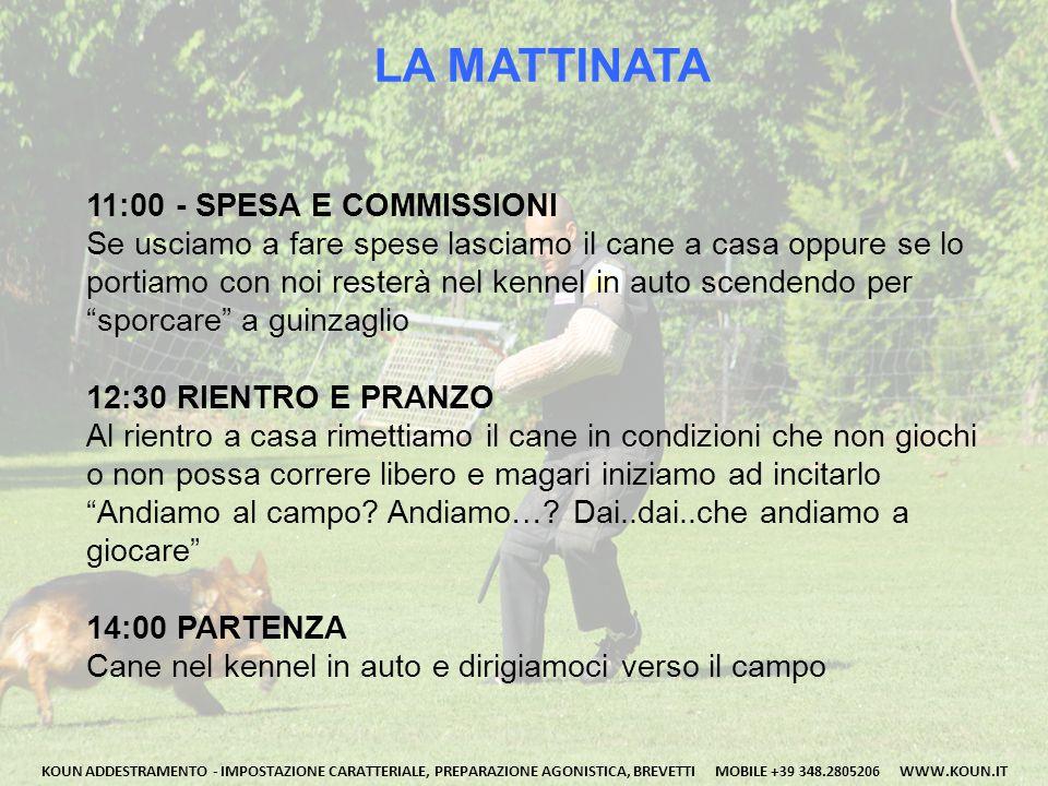 LA MATTINATA 11:00 - SPESA E COMMISSIONI