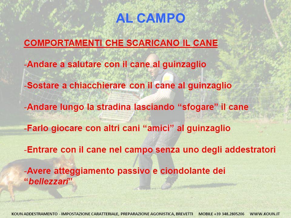 AL CAMPO COMPORTAMENTI CHE SCARICANO IL CANE