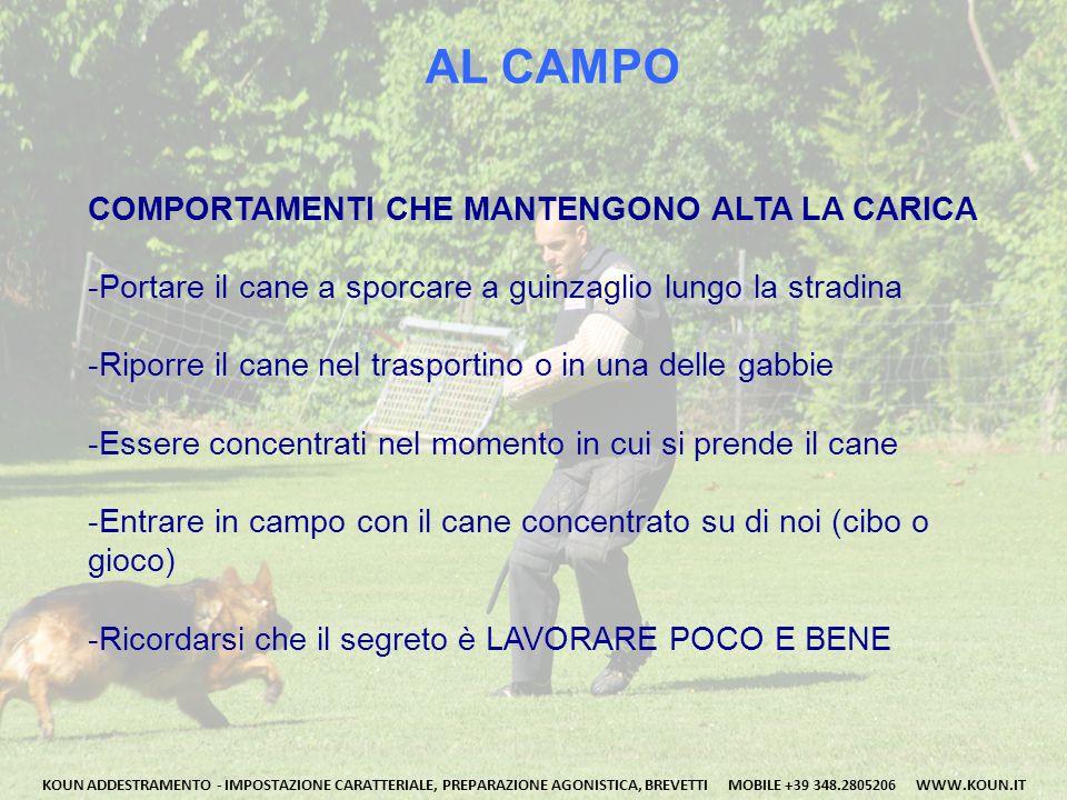 AL CAMPO COMPORTAMENTI CHE MANTENGONO ALTA LA CARICA