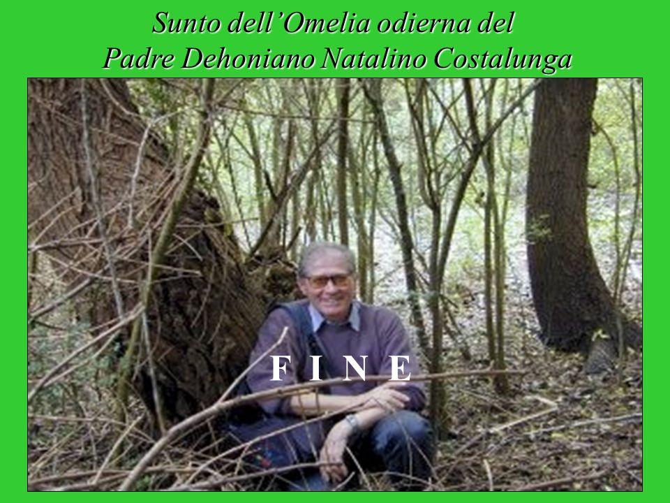 Sunto dell'Omelia odierna del Padre Dehoniano Natalino Costalunga