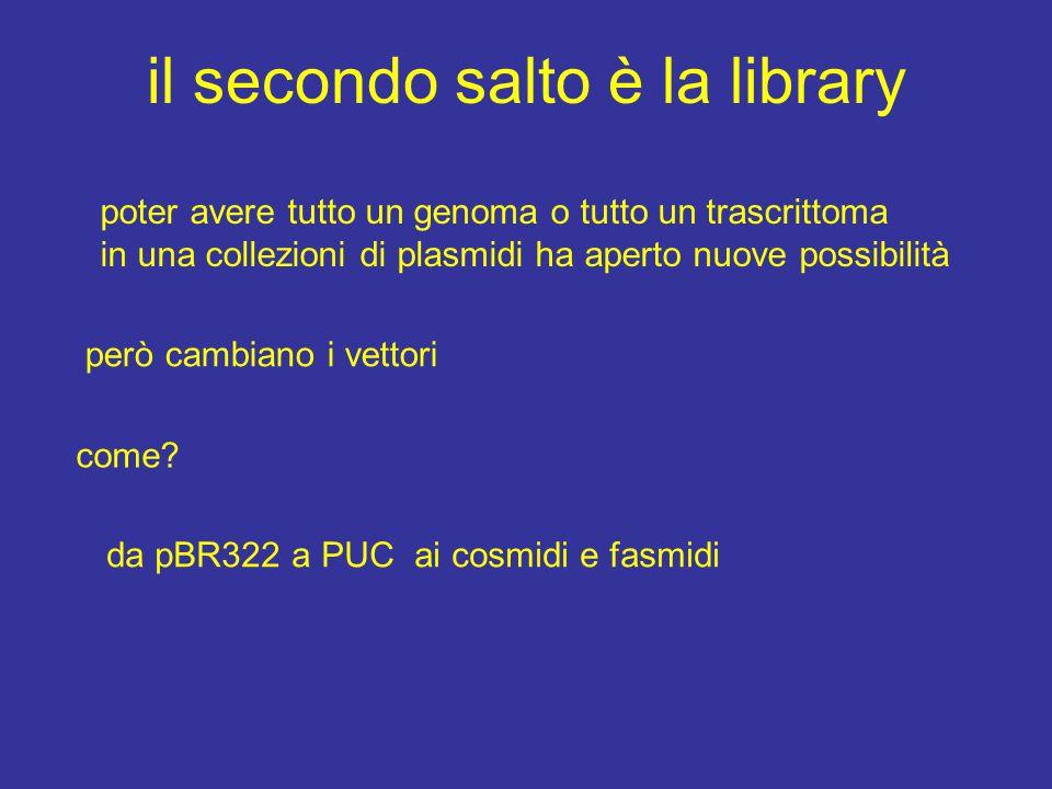 il secondo salto è la library