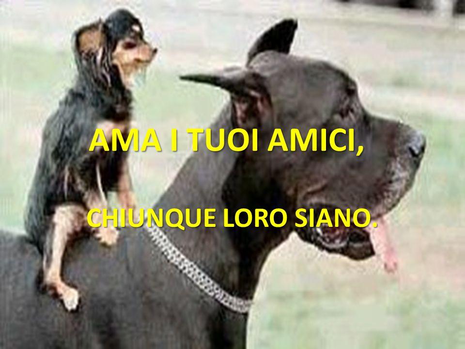 AMA I TUOI AMICI, CHIUNQUE LORO SIANO.