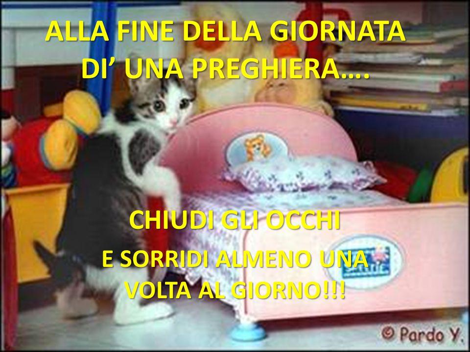 ALLA FINE DELLA GIORNATA DI' UNA PREGHIERA….