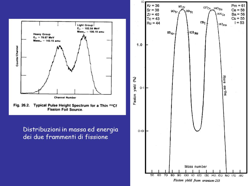 Distribuzioni in massa ed energia dei due frammenti di fissione
