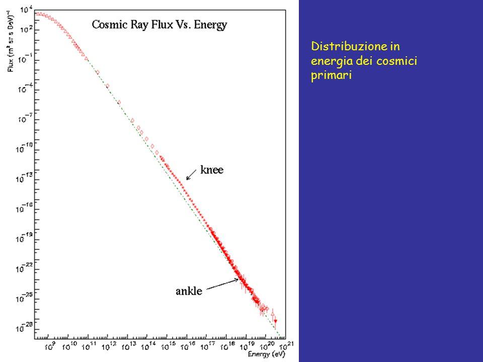 Distribuzione in energia dei cosmici primari