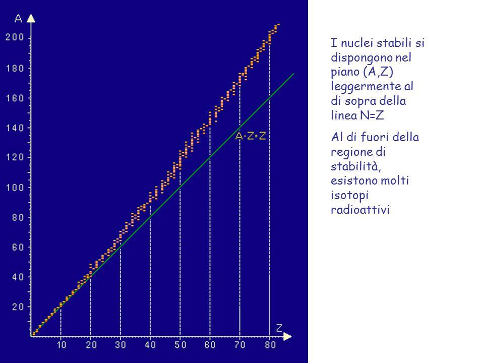 I nuclei stabili si dispongono nel piano (A,Z) leggermente al di sopra della linea N=Z