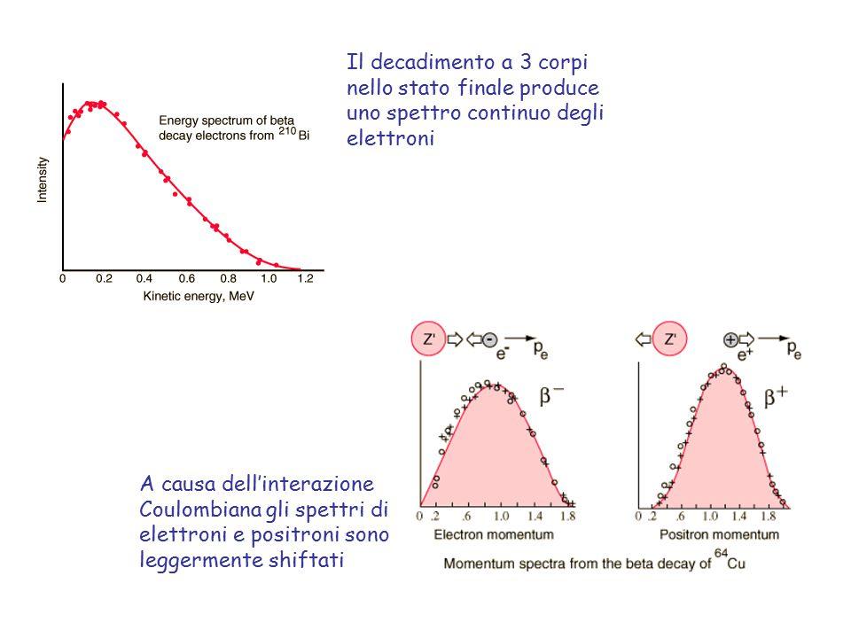 Il decadimento a 3 corpi nello stato finale produce uno spettro continuo degli elettroni