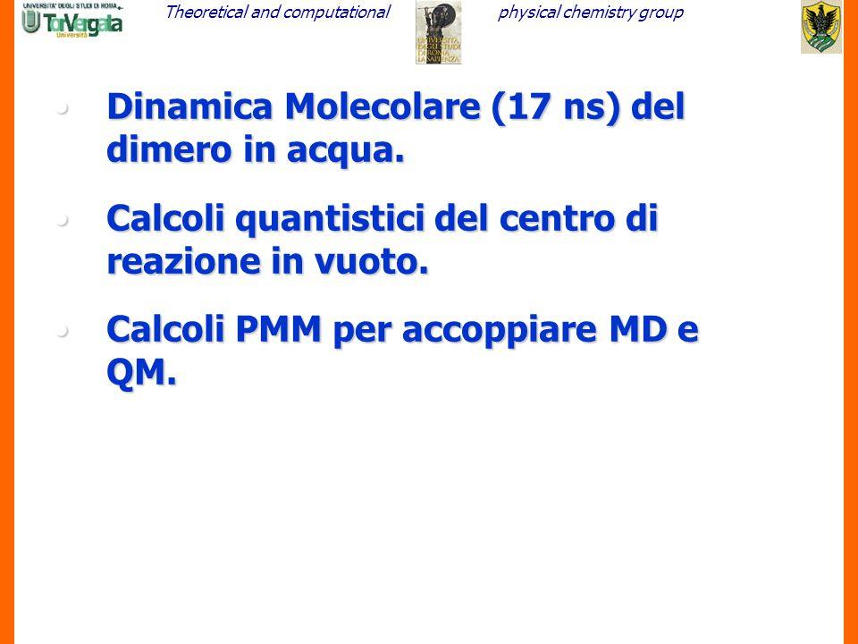 Dinamica Molecolare (17 ns) del dimero in acqua.