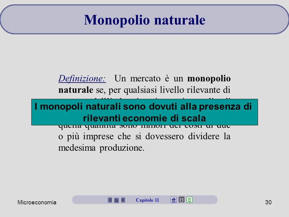 Monopolio naturale