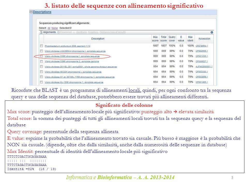3. listato delle sequenze con allineamento significativo
