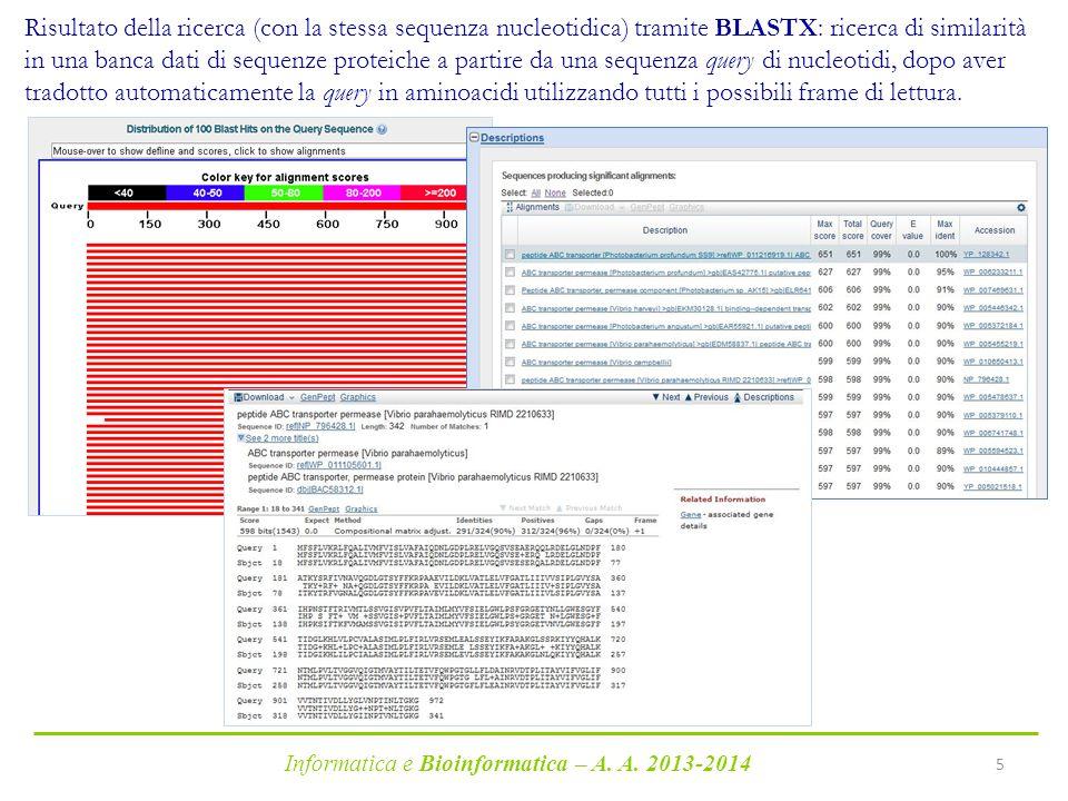 Risultato della ricerca (con la stessa sequenza nucleotidica) tramite BLASTX: ricerca di similarità in una banca dati di sequenze proteiche a partire da una sequenza query di nucleotidi, dopo aver tradotto automaticamente la query in aminoacidi utilizzando tutti i possibili frame di lettura.