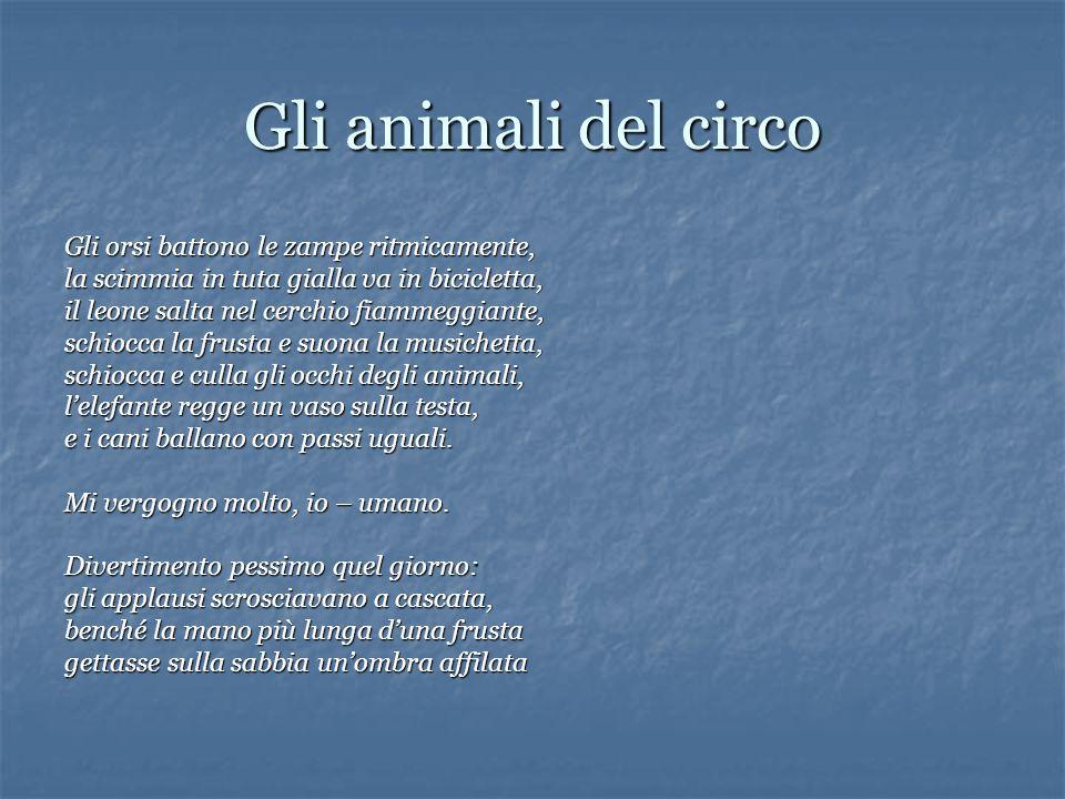Gli animali del circo