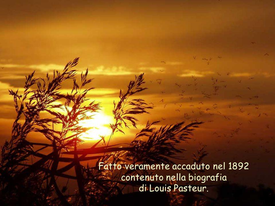 Fatto veramente accaduto nel 1892 contenuto nella biografia di Louis Pasteur.