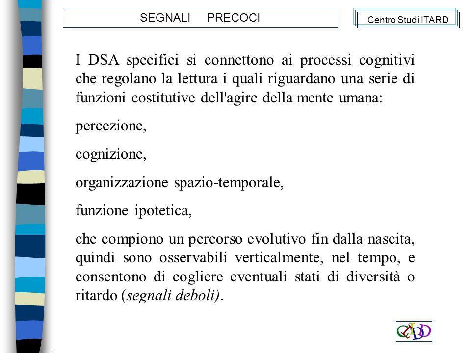 organizzazione spazio-temporale, funzione ipotetica,