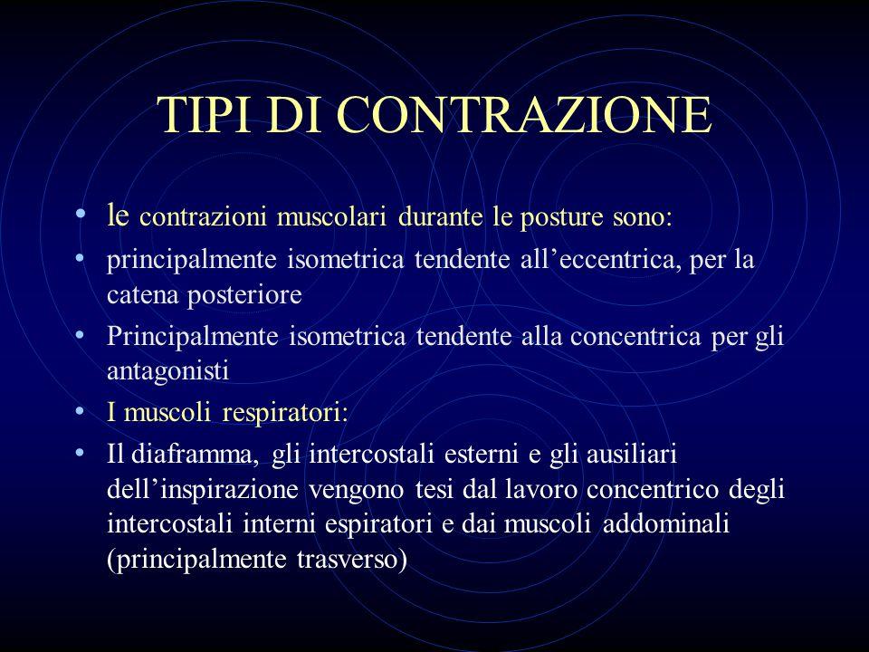 TIPI DI CONTRAZIONE le contrazioni muscolari durante le posture sono: