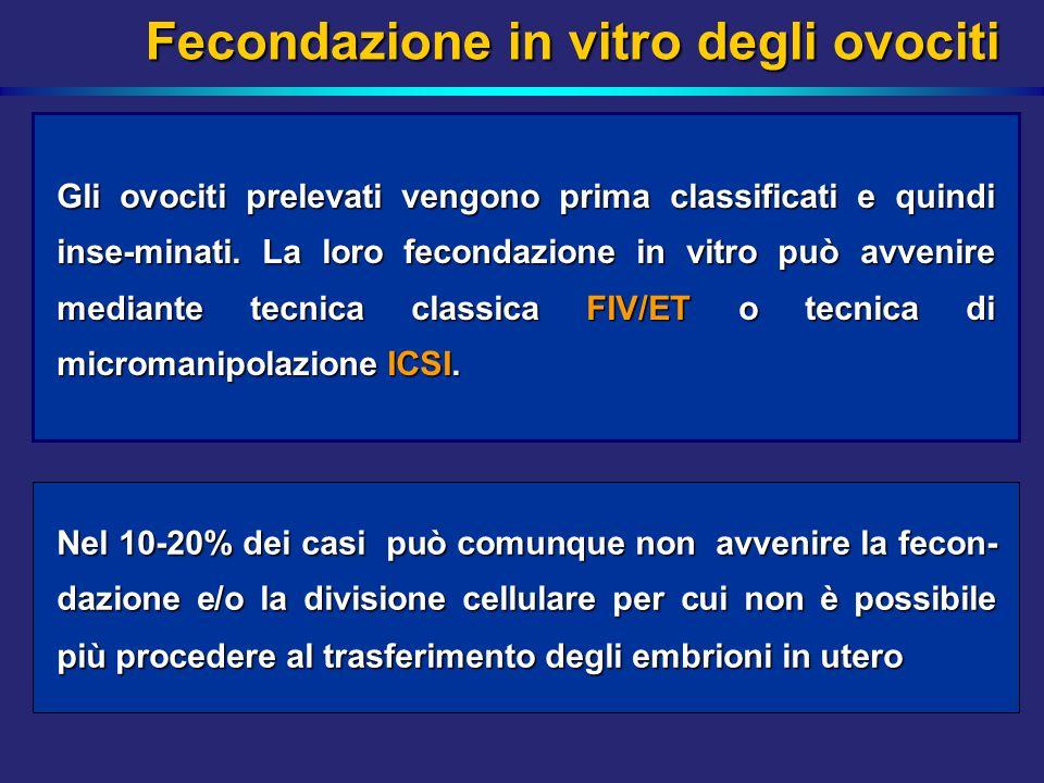 Fecondazione in vitro degli ovociti