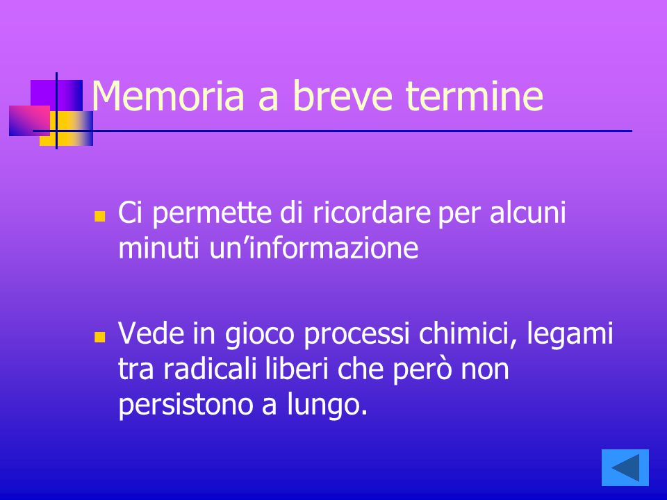Memoria a breve termine