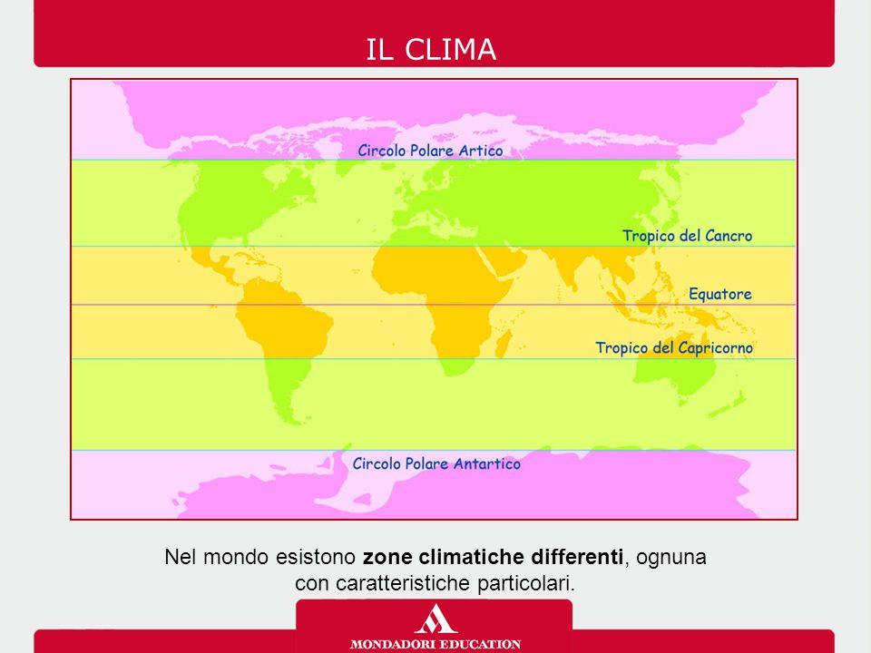 IL CLIMA Nel mondo esistono zone climatiche differenti, ognuna